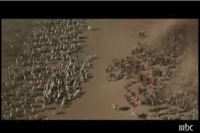 perang-badar-2.jpg